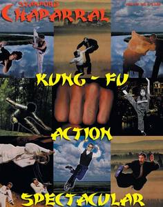 Kung fu action spectacular cover